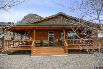 Creede Single Family Home NEW: 470 Chipmunk Court