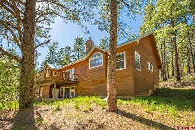 La Plata County Single Family Home For Sale: 157 Ciervo Drive