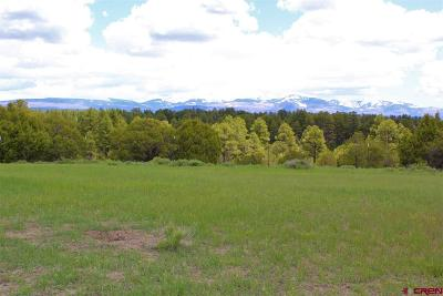 Mancos CO Residential Lots & Land For Sale: $79,800