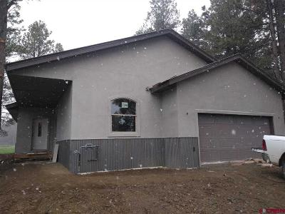 Pagosa Springs Single Family Home UC/Contingent/Call LB: 174 Inspiration Drive