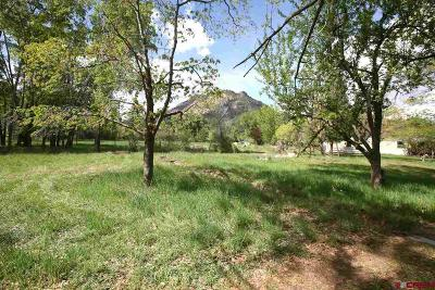 Durango Residential Lots & Land For Sale: 8051 Cr 203