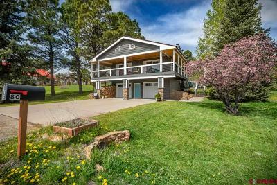 Pagosa Springs Single Family Home For Sale: 80 Pines Club Place