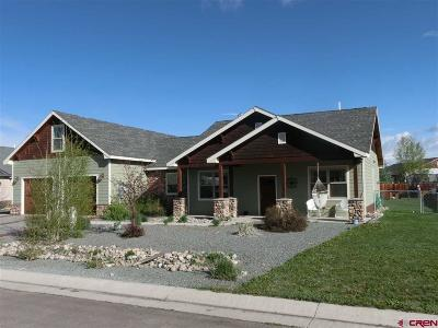 Gunnison Single Family Home For Sale: 708 Andrew Lane