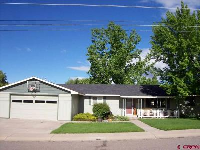 Single Family Home For Sale: 160 NW 10th Street