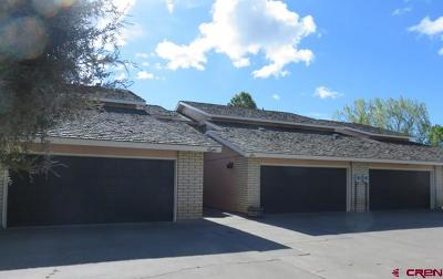 Alamosa Condo/Townhouse NEW: 6 River Drive
