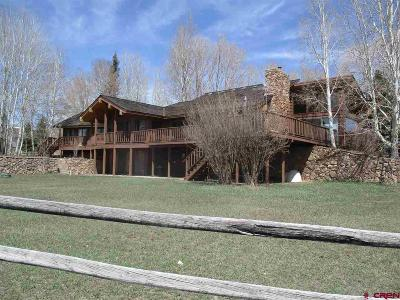 Gunnison County Single Family Home For Sale: 208 Chippewa Way