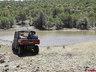 Mule Creek NM Farm NEW: $917,000