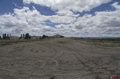 Delta CO Residential Lots & Land For Sale: $37,000