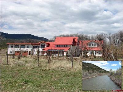 Pagosa Springs CO Farm NEW: $849,000