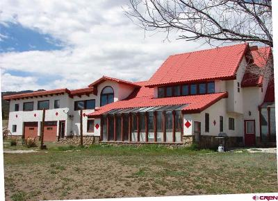 Pagosa Springs Single Family Home For Sale: 12747 State Highway 151