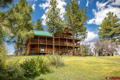 Archuleta County Single Family Home NEW: 221 Regal Pines Court