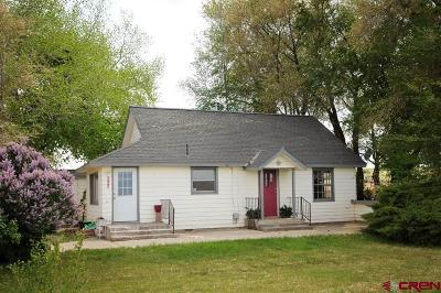 Montrose Single Family Home UC/Contingent/Call LB: 58076 Kiowa Road