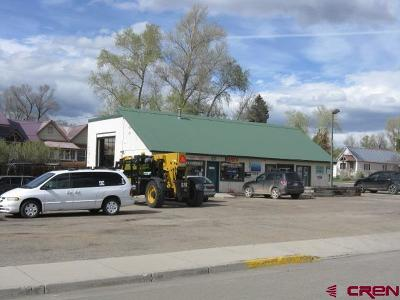 Gunnison County Commercial For Sale: 702 W Tomichi Avenue