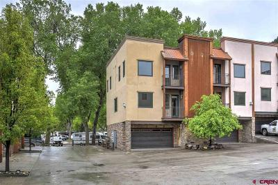 Durango Condo/Townhouse NEW: 1422 Animas View Drive #39
