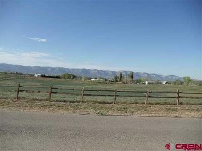 Dolores Residential Lots & Land NEW: 27190 Road M.7