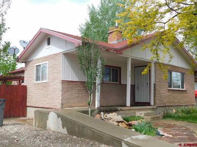 Cortez Single Family Home NEW: 708 Canyon Drive