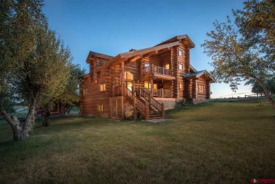 La Plata County Single Family Home NEW: 4398 Highway 172