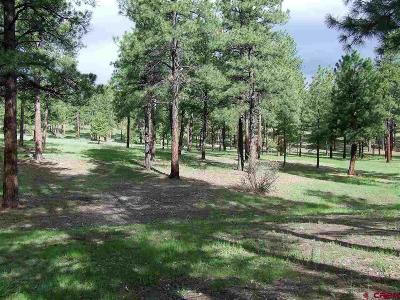 Bayfield Residential Lots & Land NEW: 1312 Beaver Creek Drive