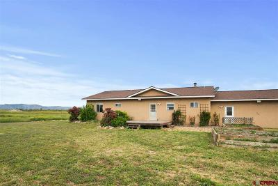 La Plata County Single Family Home NEW: 7262 Highway 550
