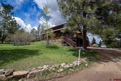 Archuleta County Single Family Home NEW: 156 S Squaw Canyon Place
