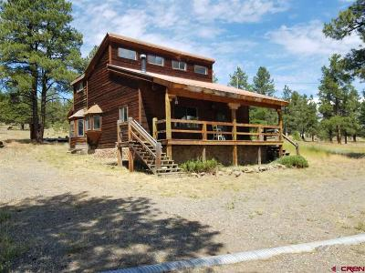 Archuleta County Single Family Home NEW: 1541 County Road 500