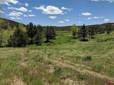 Bayfield Residential Lots & Land NEW: 237 Holman Canyon Road