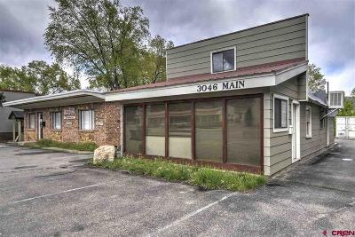 Durango Commercial For Sale: 3046 N Main Avenue