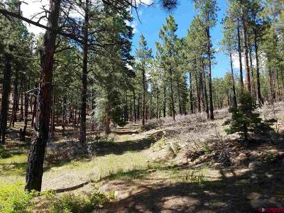 Residential Lots & Land NEW: 303 Blue Spruce Drive