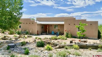 Montrose Single Family Home For Sale: 64102 Peach Valley Road
