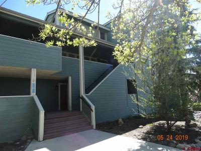 Archuleta County Condo/Townhouse NEW: 40 Valley View Drive #3155 &am