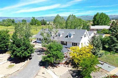 Cedaredge Single Family Home For Sale: 190 NE Knotty Pine Court