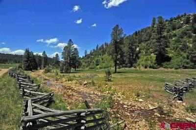 Mancos Residential Lots & Land For Sale: 15990 Road 36.5