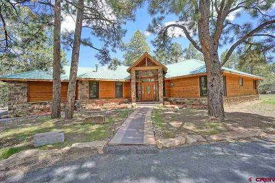 Ridgway Single Family Home For Sale: 286 Bear Cub Drive