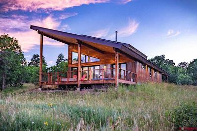 Pagosa Springs Single Family Home For Sale: 82 Elderberry Glen