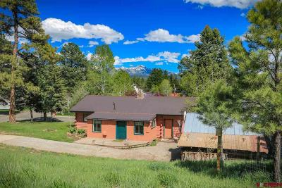 Pagosa Springs Single Family Home For Sale: 325 N. 3rd Street