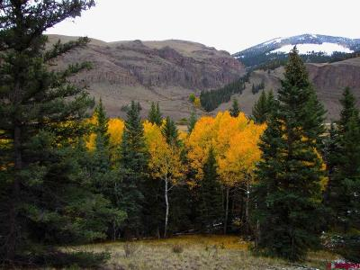 Creede Residential Lots & Land For Sale: 223 Aqwisic Drive