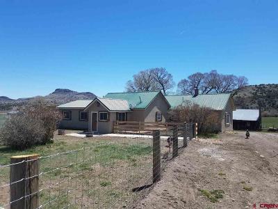 Del Norte Single Family Home For Sale: 7230 Co. Rd. 14
