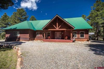 Pagosa Springs Single Family Home For Sale: 125 Teakwood Drive
