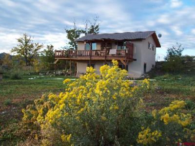 Durango Single Family Home For Sale: 101 El Co Court