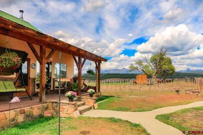 Pagosa Springs Single Family Home For Sale: 1200 Tierra Del Oro Drive