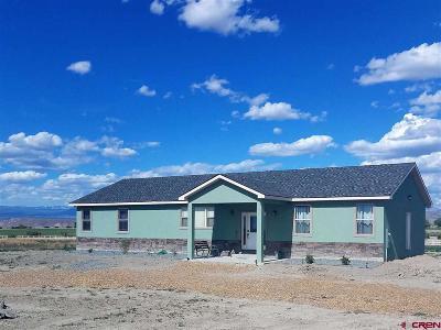 Delta Single Family Home For Sale: 21058 Sol Vista Lane