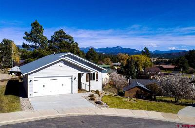 Pagosa Springs Single Family Home For Sale: 405 Mesa Dr