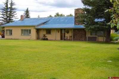 Gunnison County Commercial For Sale: 101 N 10th Street
