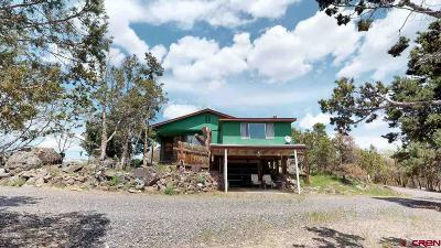 Cedaredge Single Family Home For Sale: 385 Indian Camp