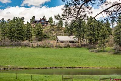 Pagosa Springs Single Family Home For Sale: 733 Royal Elk Place