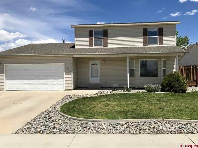 Montrose Single Family Home For Sale: 1840 Biron Road