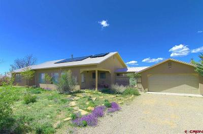 Mancos Single Family Home For Sale: 33795 Road K8