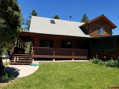 Mancos Single Family Home For Sale: 35515 Hwy 184