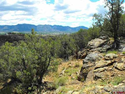 Cortez CO Residential Lots & Land For Sale: $185,000