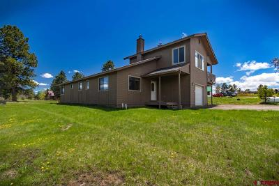 Pagosa Springs Single Family Home For Sale: 318 Grenadier Place